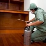 Dịch vụ diệt côn trùng Bình Thuận