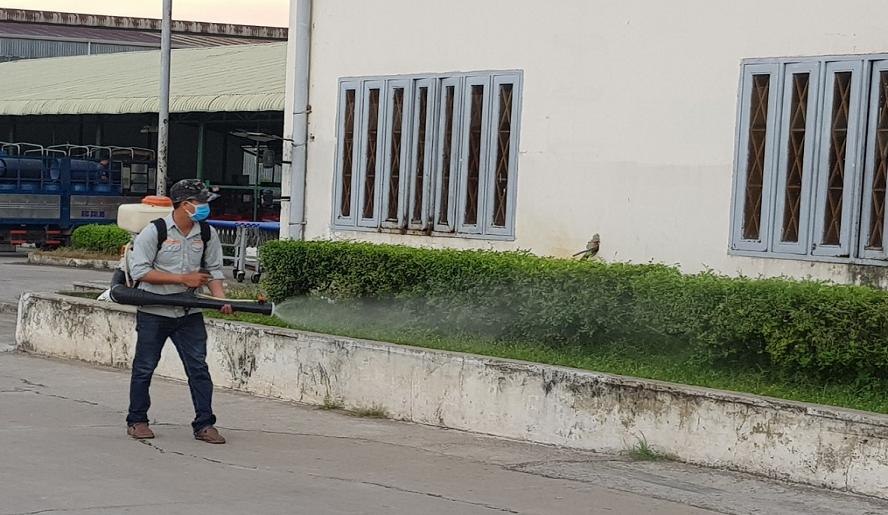 Dịch vụ phun diệt muỗi tại Đà Nẵng