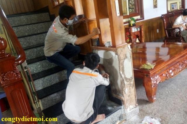 Công ty diệt mối tại Sơn La