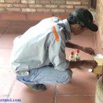 Dịch vụ diệt côn trùng quận Hàng Kiếm