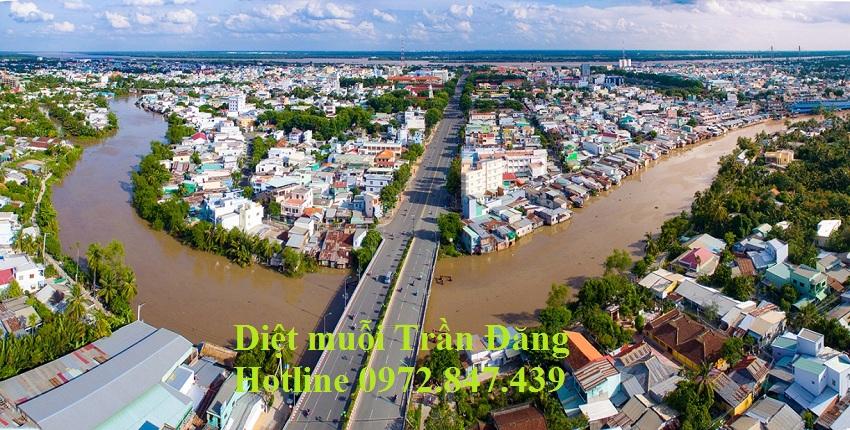 Dịch vụ diệt muỗi tại Tiền Giang