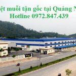 Dịch vụ phun diệt muỗi tại Quảng Ninh