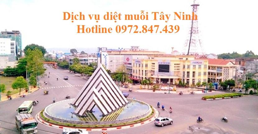 Dịch vụ phun diệt muỗi tỉnh Tây Ninh