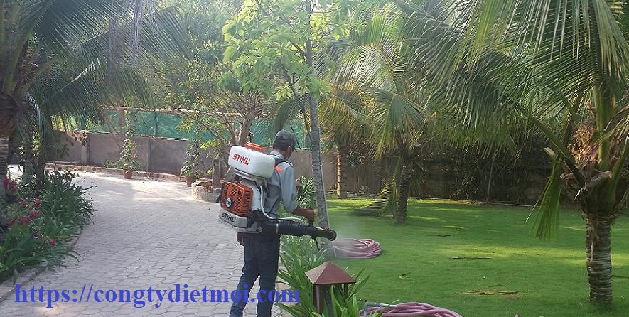 Dịch vụ diệt muỗi huyện Phúc Thọ