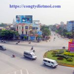 Công ty diệt chuột giá rẻ tại Thanh Hoá