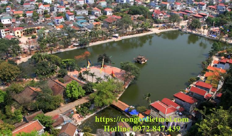 Dịch vụ diệt muỗi hiệu quả huyện Quốc Oai