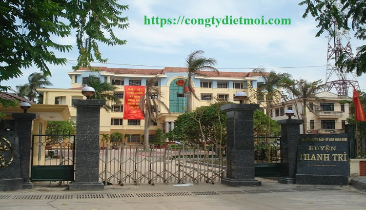 Dịch vụ phun diệt muỗi huyện Thanh Trì