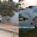 Dịch vụ diệt muỗi hiệu quả Thái Nguyên