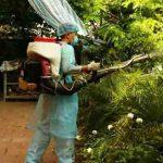 phun thuốc diệt muỗi tại Đồng Nai