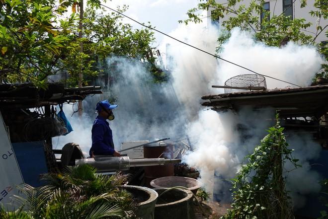 diệt muỗi tại Hải Phòng