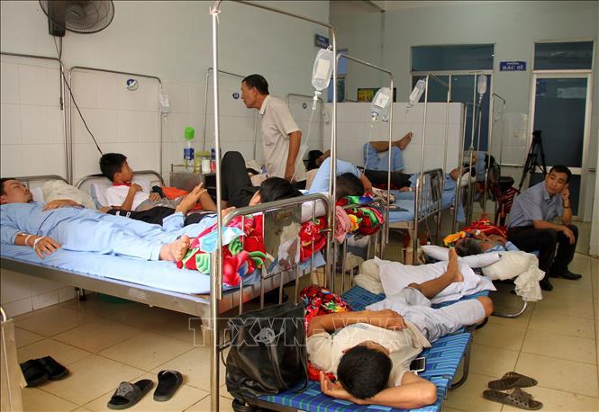 diệt muỗi tại Đà Nẵng