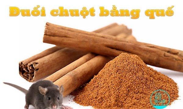 cách diệt chuột bằng mùi hương